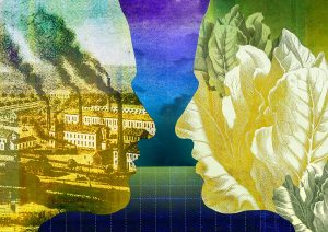 Two profiles face to face contrasting industrial pollution and the green environment