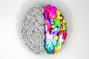 A typical brain with the left side depicting an analytical, structured and logical mind, and the right side depicting a scattered, creative and colorful side on an isolated background